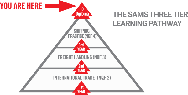 freight-logistics-graphic